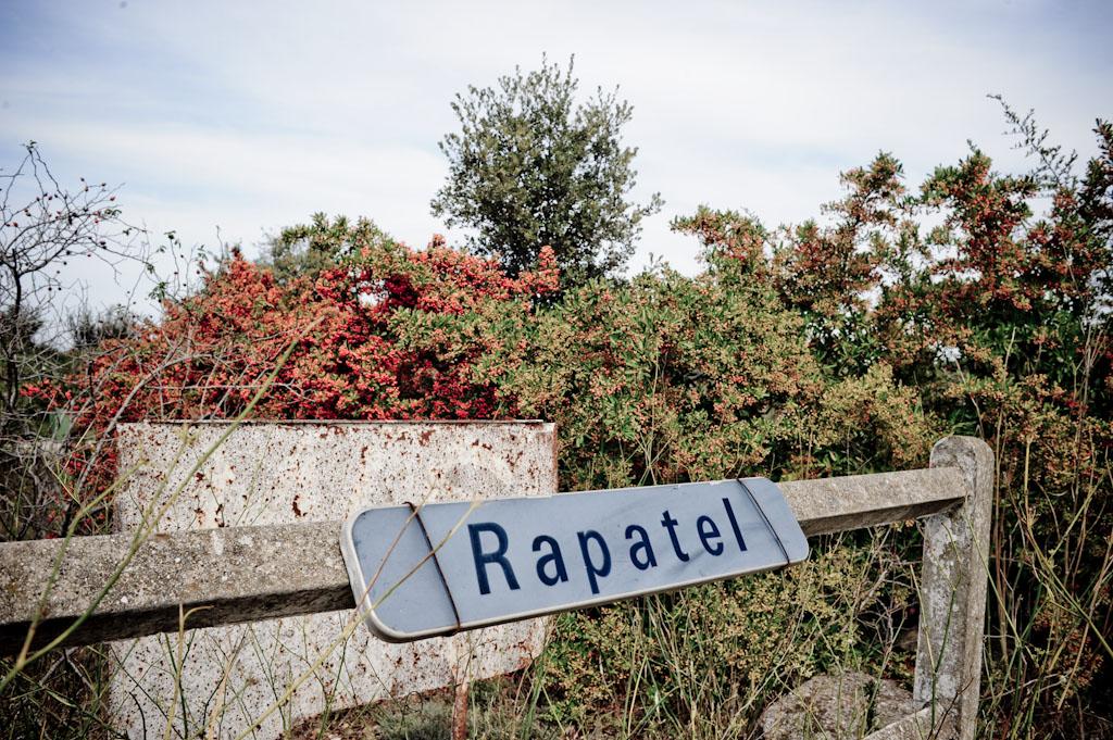Domaine de Rapatel, vini naturali al confine tra Camargue e Languedoc Roussillon