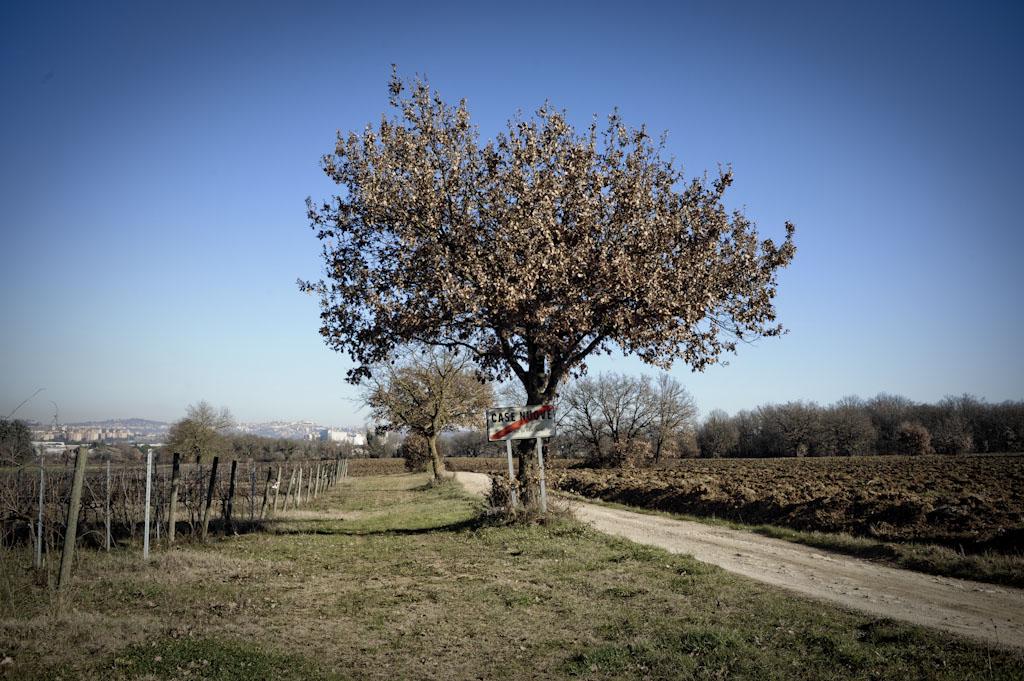 Il terroir dei colli perugini, dove si trovano le vigne di Carlo Tabarrini, vini naturali in Umbria