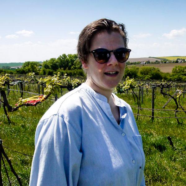 Slobodnè vinárstvo - Majer Zemianske Sady