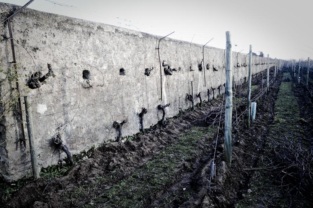 Il muro a Clos Cristal