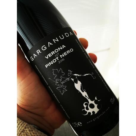 Garganuda Verona Igt Pinot Nero 2016