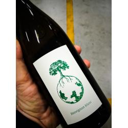 Sauvignon Blanc Vom Opok 2016 - Werlitsch