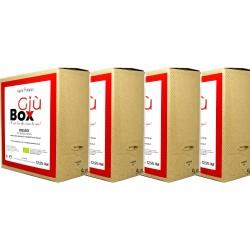 4 x GIUBOX Baginbox 5L Rosso Igp Puglia 2019 -  Tenuta Demaio