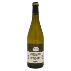 Oppidum Chardonnay Cotes de Auvergne AOC 2020 Bio