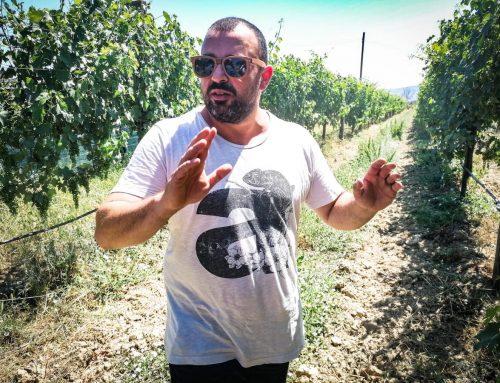 I nuovi vini di Carlo Tabarrini – Cantina Margò in Esclusiva su Meteri
