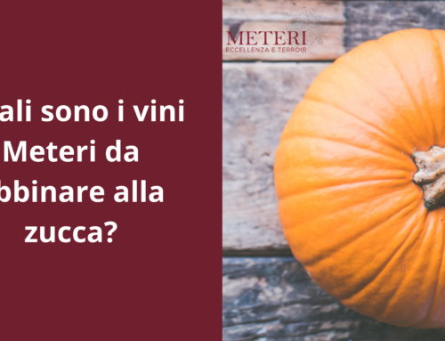 Quali sono i vini da abbinare alla zucca?